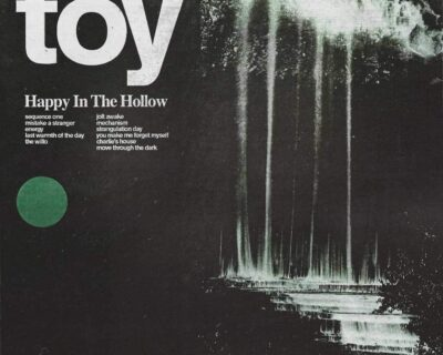 Toy: 'Happy In The Hollow' (Tough Love, 2019)