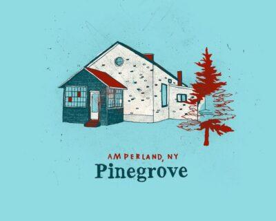 Le news di oggi: Pinegrove, Orville Peck, Shame, Snuts, Sylvan Esso