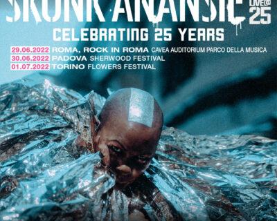 Nuovi concerti: Skunk Anansie, John, Grandson, Black Stone Cherry, Pitchfork Chicago